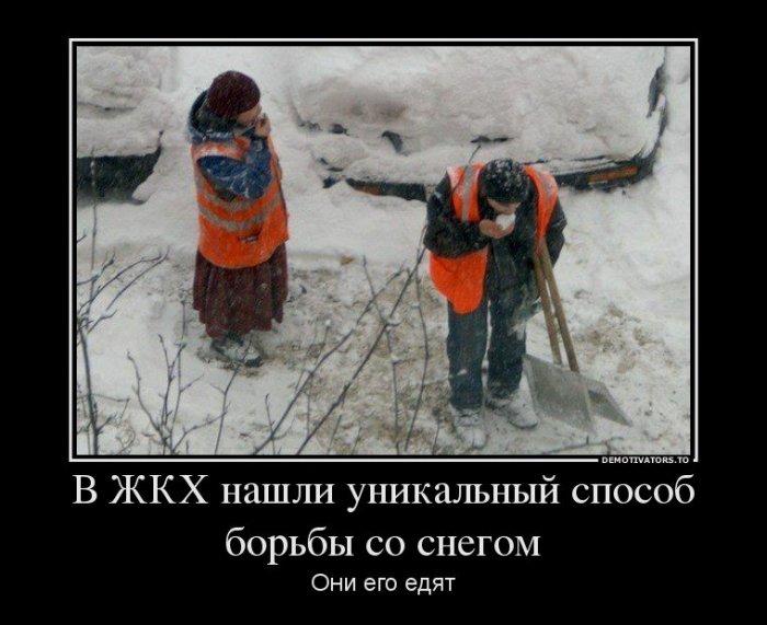 Весёлые демотиваторы (65 фото)