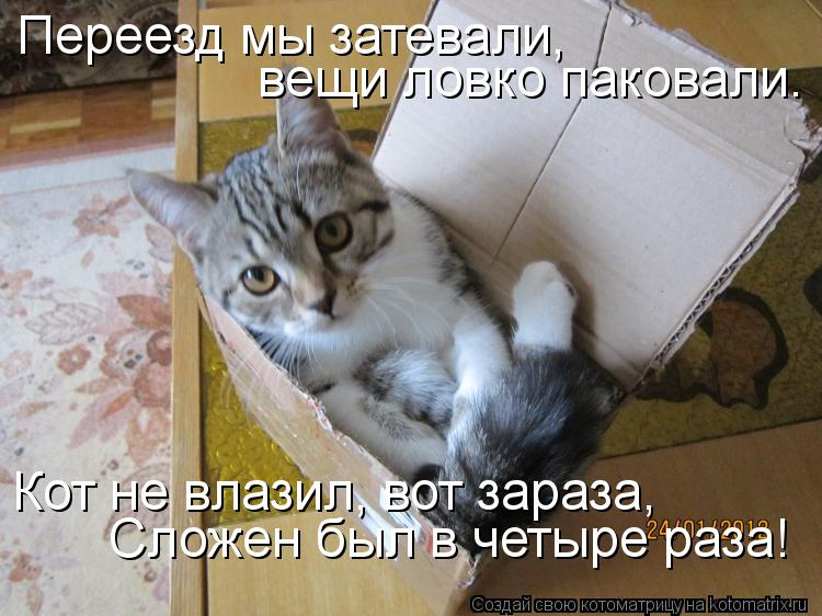 http://bygaga.com.ua/uploads/posts/1332972755_kotomatrica-4.jpg