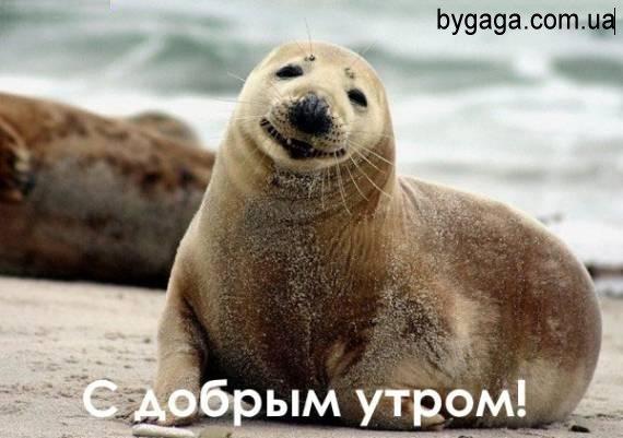 http://bygaga.com.ua/uploads/posts/2012-02/1328710235_4165512.jpg