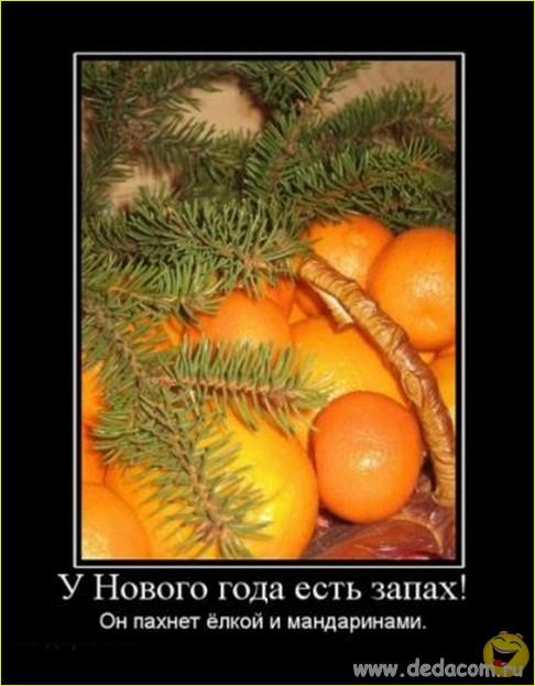Весёлые демотиваторы про Новый Год и Деда Мороза (17 фото)